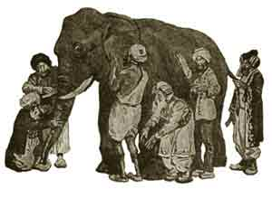 blind men and elephant